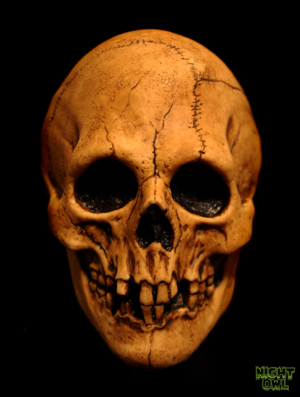 Voodoo Skull By Justin Mabry