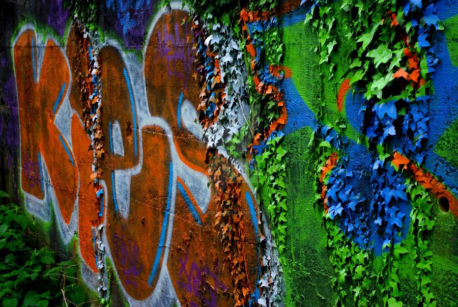 graffiti IX by MaLiBuDreaD