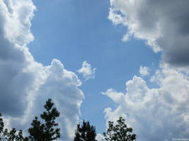 Passing clouds 12
