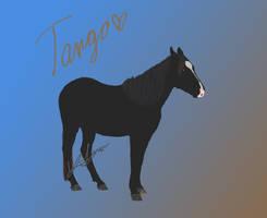Tango's Digital Portrait
