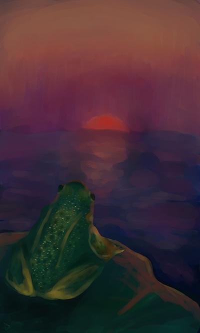 The Frog's Sky by mystegun