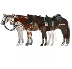 P2U : Quarter Horse Customisable Lineart