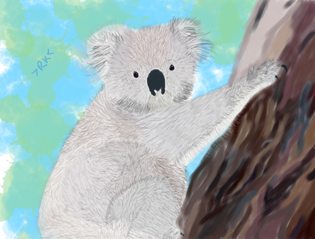 Koala by Raining-Kittens0610