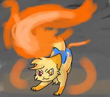 Kid of fire