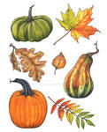 Autumn leaves and pumpkins by TanyaTej