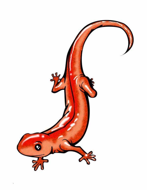 Fire salamander tattoo - photo#20