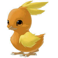 Torchic--realistic by Mewitti