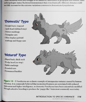 Intro to Zoology I