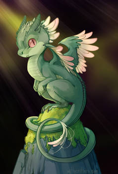 Petal-backed Dragon