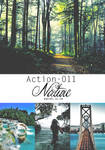Action 011 - Nature