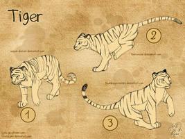 Croquis de Tigres