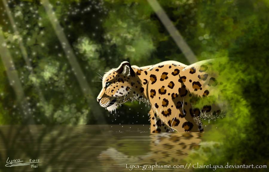 Jaguar Water Jungle by ClaireLyxa