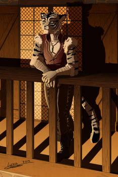 Skylo the gray tiger