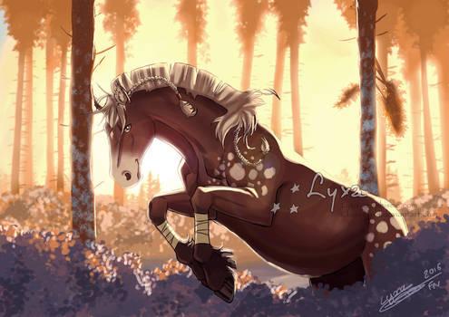 Horse's jump
