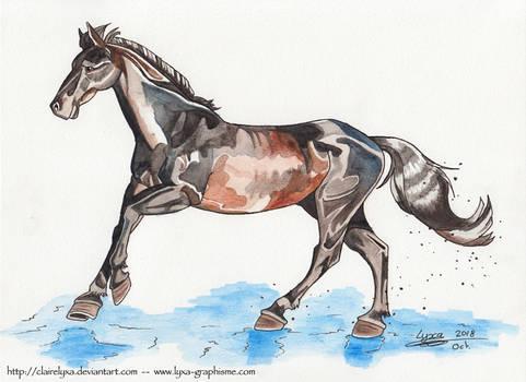 Watercolor of a random horse