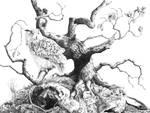 Spirit of Broceliande