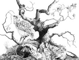 Spirit of Broceliande by Dom2691