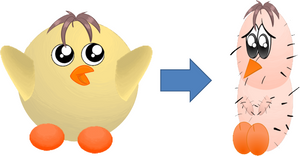 chick 2: before and after