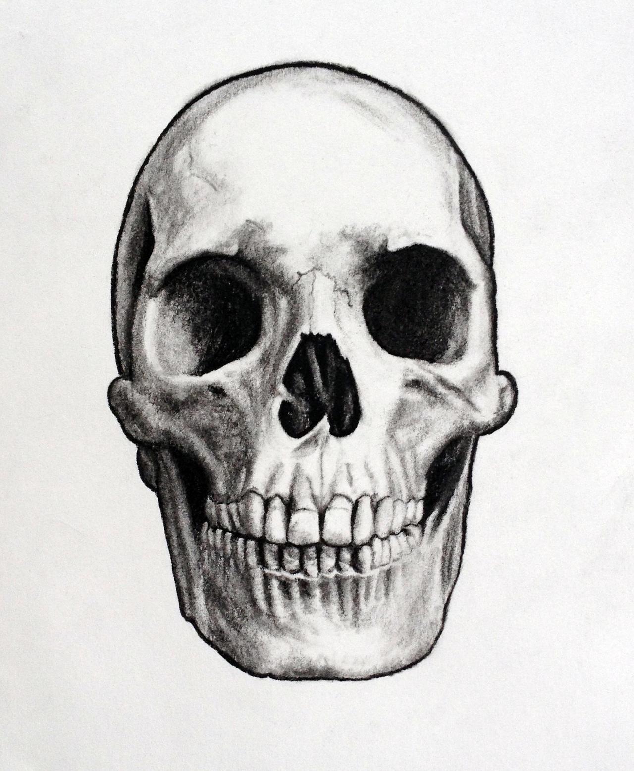Charcoal Skull Drawing by John Gordon by JohnGordonArt on