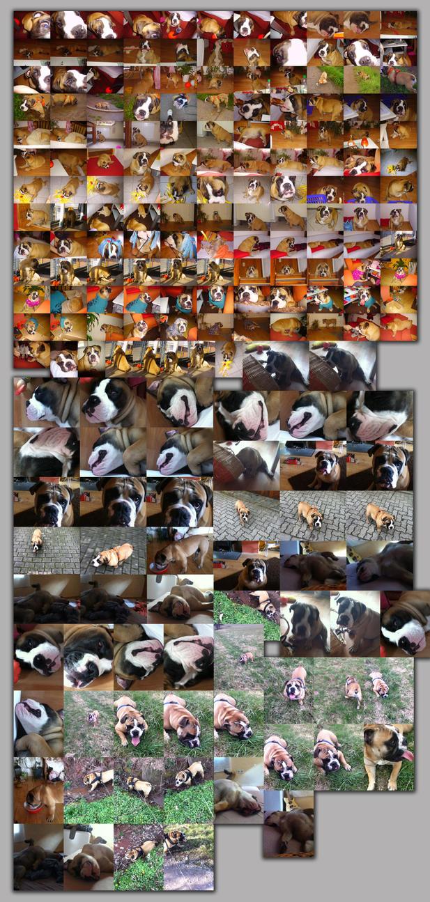 bobby collage 2 by xylomon