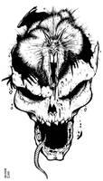 Rat skull by 80sogre