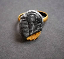 Steampunk Trilobite Ring by KatarinaNavane