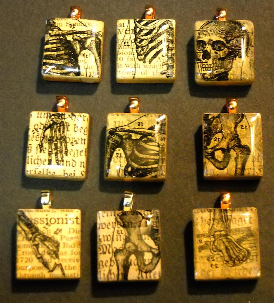 Anatomy scrabble tile pendants by katarinanavane on deviantart anatomy scrabble tile pendants by katarinanavane anatomy scrabble tile pendants by katarinanavane aloadofball Choice Image