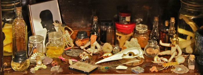 Morbid Curiosity Shop Cabinet Shelf
