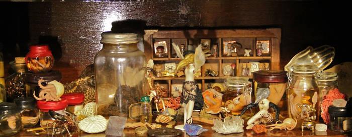 Morbid Curiosity Shop Cabinet Shelf 2