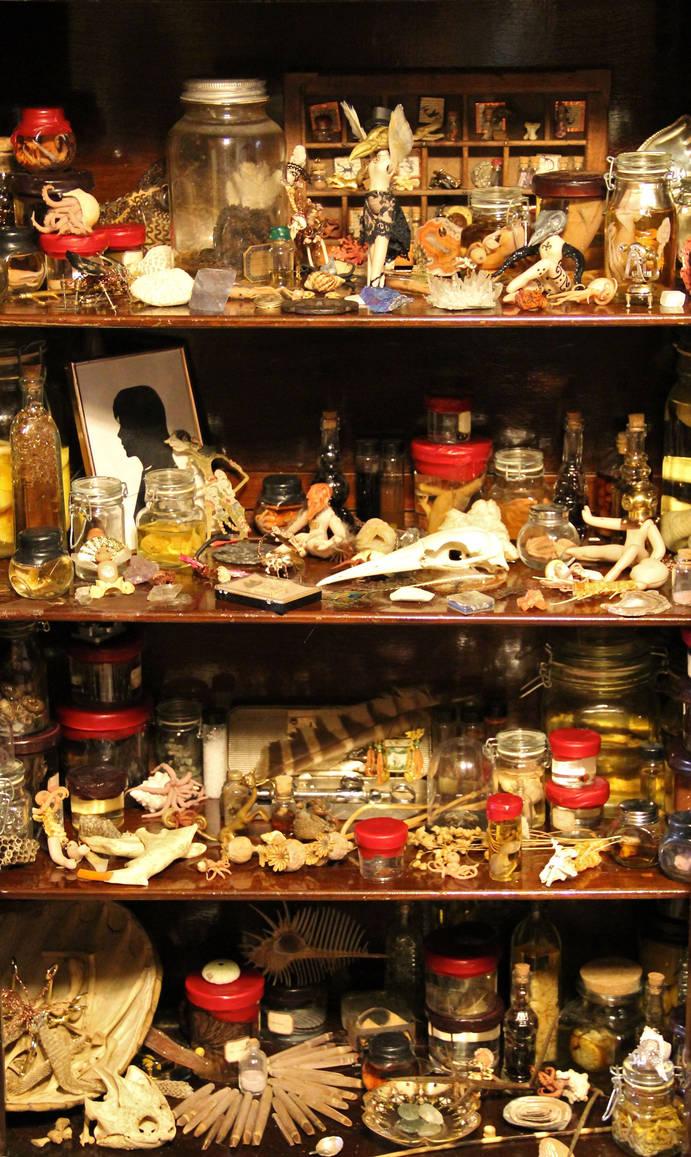 Morbid Curiosity Shop Redux Cabinet