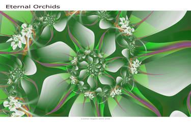 Eternal Orchids by GillsDigitalWorld