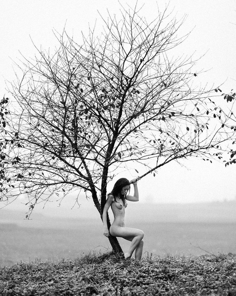 Last Tree by eugenebuzuk