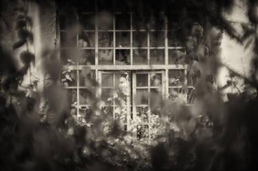 The Sanatorium by stevemcqueen237