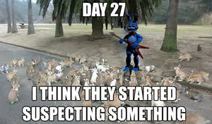 Day 27...