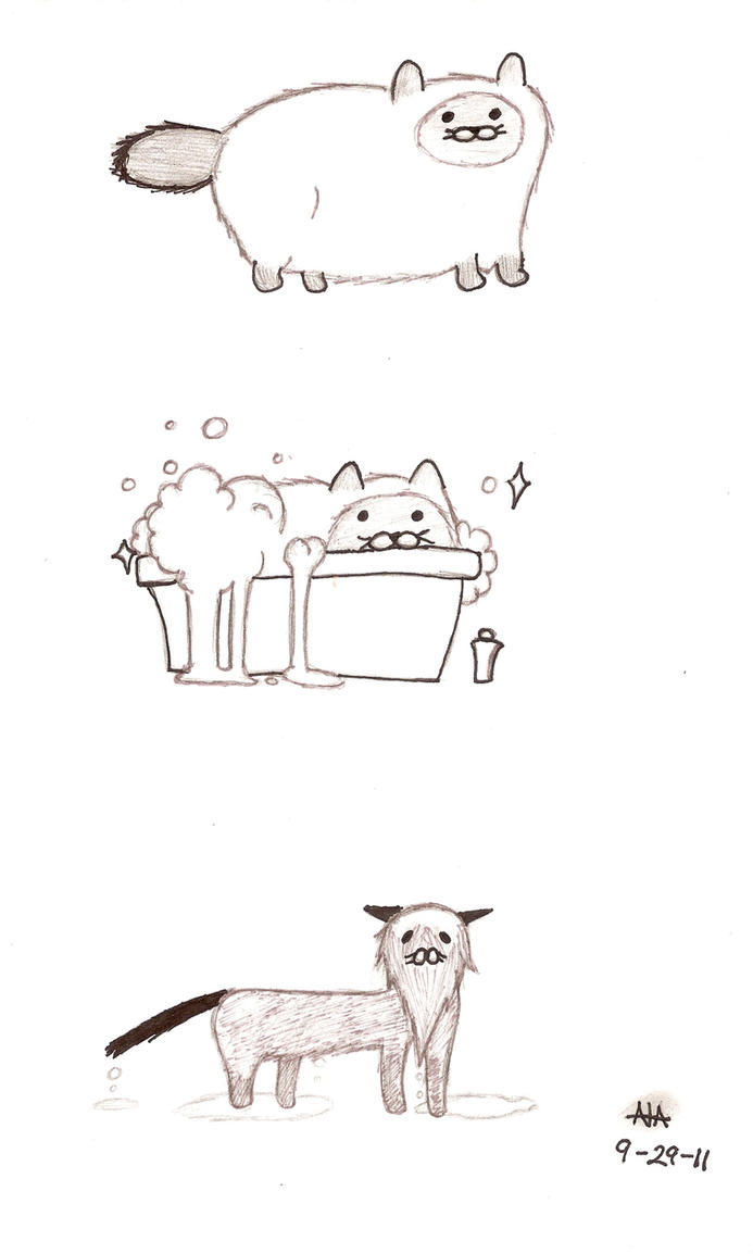 The Fluffy Cat Takes A Bath by SlySlimeySlime