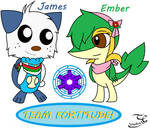 Team Fortitude! (PMD - Gates To Infinity)