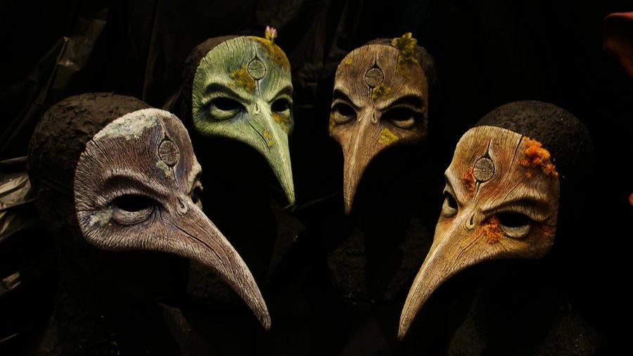 4 seasons of bird beaks by GorillaEye