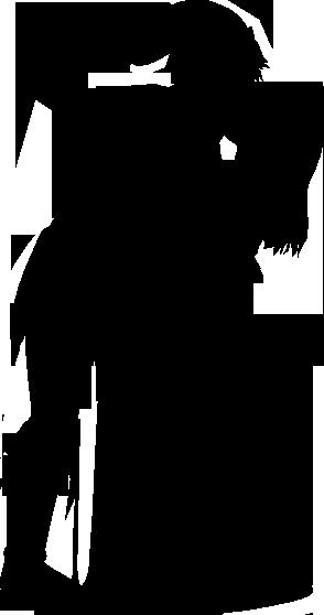27+ Transparent Zelda Silhouette Gif