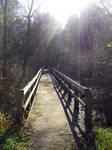 Daylight Bridge