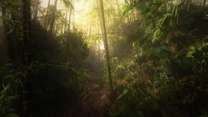 Bamboo deep in the jungle