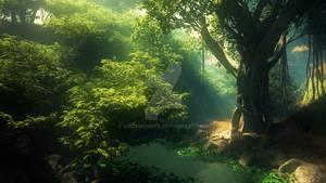 Hidden Magical Forest