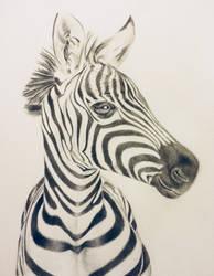 Zebra Nursery Painting