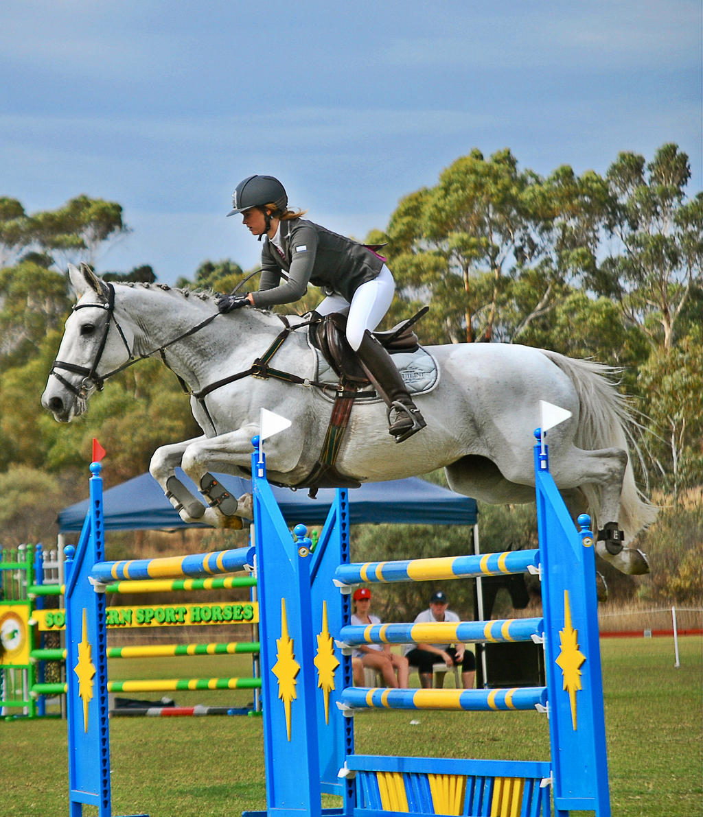 0145 by EquusAustralia