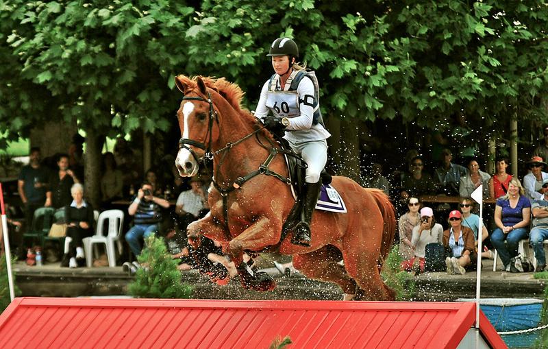 0228 by EquusAustralia