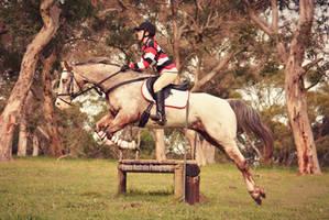Roskhill ODE by EquusAustralia