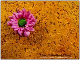 Deviant ID by Hav-U-smiled-2day