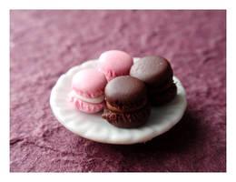 Macaron by Shiritsu