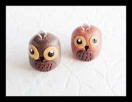 Owls by Shiritsu