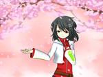 -Sakura no Ame-