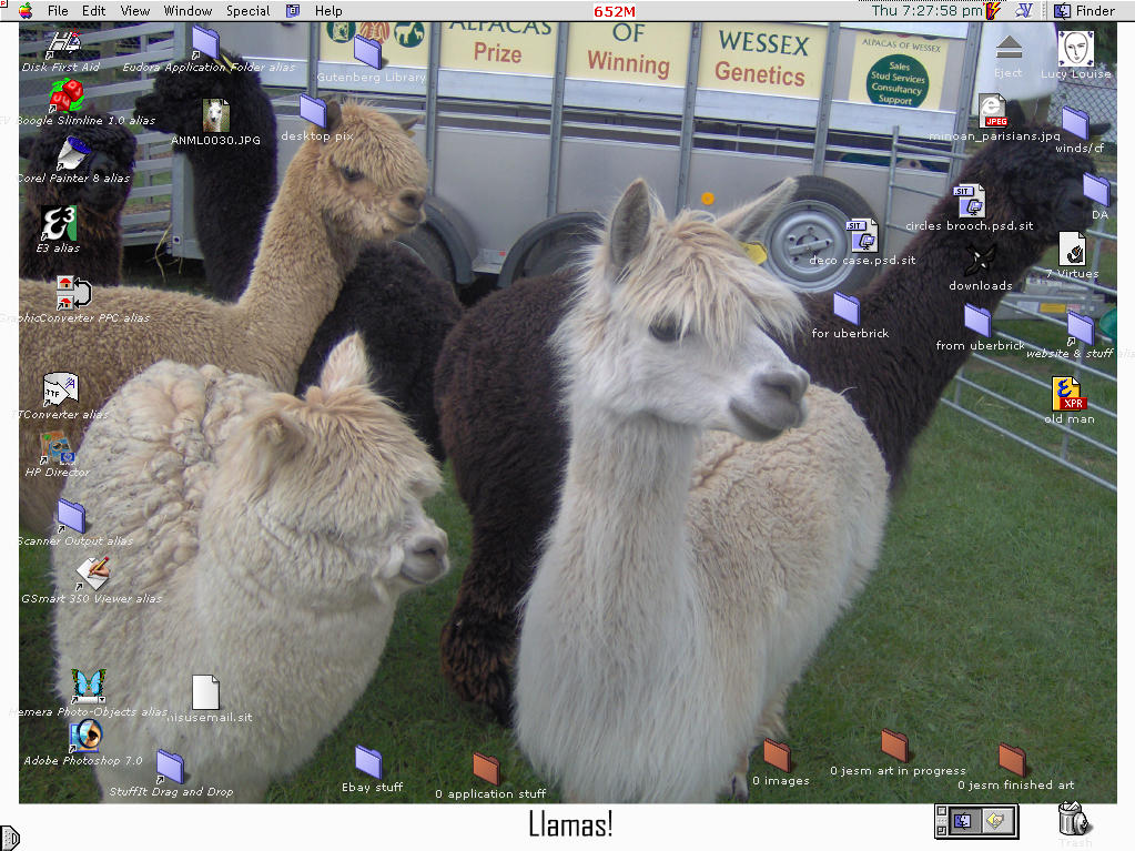 alpacas not llamas by ariadne-a-mazed